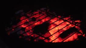 Carbone bruciante in griglia stock footage