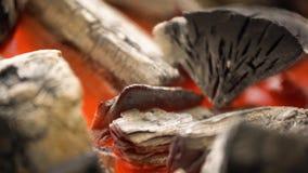 Carbone caldo d'ardore nella griglia Pit With Flames del BBQ Priorità bassa Burning dei carboni archivi video