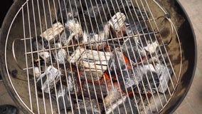Carbone caldo d'ardore nella griglia Pit With Flames, primo piano del BBQ I carboni brucianti si chiudono su fotografia stock