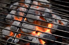 Carbone di legna Burning Fotografie Stock Libere da Diritti