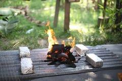 Carbone di legna Burning Fotografia Stock Libera da Diritti