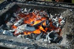Carbone di legna caldo Immagine Stock