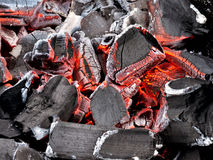 Carbone di legna d'ardore Immagini Stock