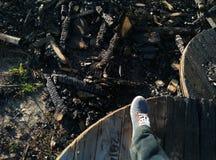 Carbone di legna e ceneri Fotografie Stock