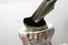 Carbone di legna per il hooka Fotografia Stock