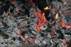 Carbones de decaimiento Imagen de archivo libre de regalías