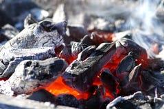 Carbones de leña ardientes fotos de archivo