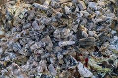 Carbones de leña de la barbacoa Imagen de archivo