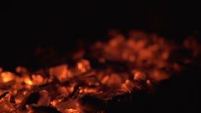 Carbones de leña rojos calientes en una hoguera almacen de video