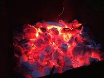 Carbones del Bbq foto de archivo