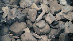Carbones del fuego, carbón de leña ardiente como fondo metrajes