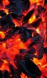 Carbones vivos Imagen de archivo libre de regalías