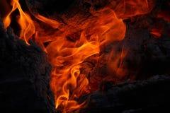 Carbones y madera ardientes brillantes Imágenes de archivo libres de regalías