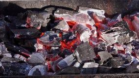 Carboni brucianti per la griglia del barbecue stock footage