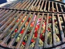 Carboni brucianti in Weber Joe Grill fumoso Immagini Stock