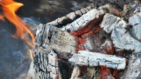 Carboni caldi Fotografia Stock
