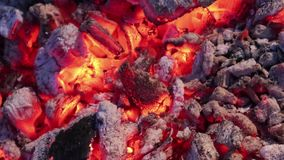Carboni caldi brillantemente d'ardore con la cenere grigia per il barbecue video d archivio