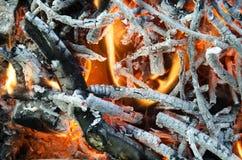 Carboni caldi dal legno bruciato Fotografia Stock