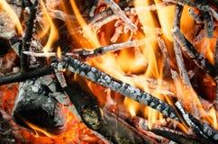 Carboni caldi dal legno bruciato Fotografia Stock Libera da Diritti