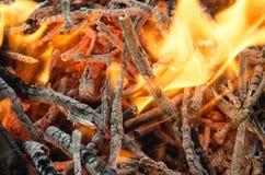 Carboni caldi dal legno bruciato Immagini Stock Libere da Diritti