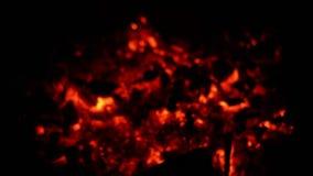 Carboni caldi dopo il partito video d archivio