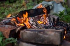 Carboni dalla legna da ardere lasciata dai turisti immagini stock libere da diritti