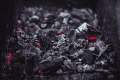 Carboni di fuoco senza fiamma al fuoco di accampamento del barbecue Fotografia Stock Libera da Diritti