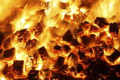 Carboni di legna Fotografie Stock