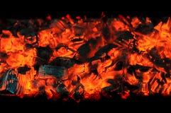 Carboni di legna d'ardore Immagine Stock Libera da Diritti