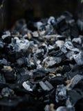 carboni di Non combustione nella griglia Immagine Stock