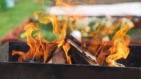Carboni e legna da ardere brucianti nell'addetto alla brasatura stock footage