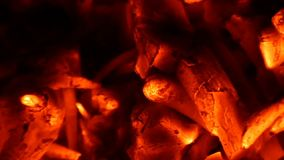 Carboni scintillanti di un falò del litorale di estate nel slo-Mo video d archivio