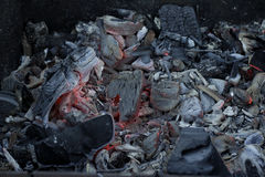 Carboni su fuoco in ceneri Immagine Stock