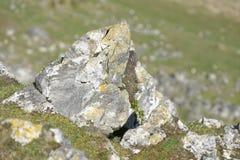 Carboniferous Limestone Outcrop stock photo