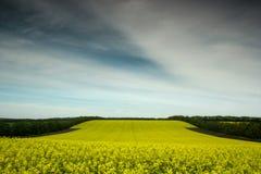 Carburant écologique Images stock