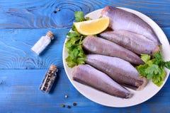 Carcaça crua fresca das pescadas, das hortaliças e do limão na placa branca imagem de stock