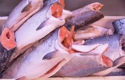 Carcaça fresca e bonita dos peixes da truta pronta para a venda imagens de stock