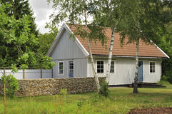 Carcaça sueco fotos de stock