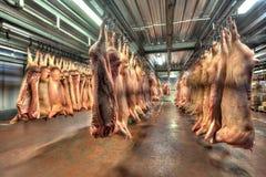 Carcaças de carne de porco que penduram nos ganchos em uma loja fria Fotografia de Stock