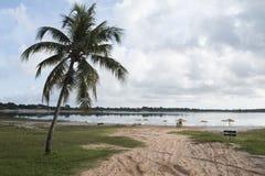 Carcara盐水湖, Nizia弗洛雷斯塔, RN,巴西 免版税库存照片