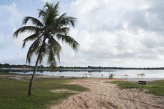 Carcara Lagoon, Nizia Floresta, RN, Brazil Royalty Free Stock Photos