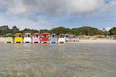 Carcara laguna, Nizia Floresta, RN, Brazylia fotografia stock