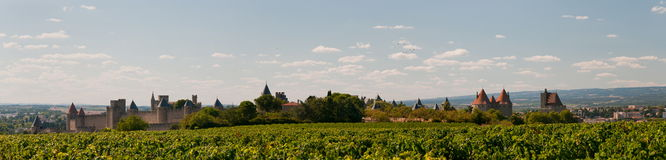 Carcasonne. Panorama. Vineyards in the ancient Citte of Carcassonne in France Royalty Free Stock Photo