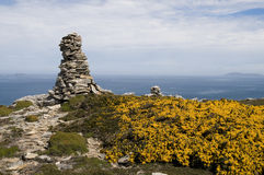Carcass Island Rock-pile. A Rock-pile atop a hill in the Falklands, surrounded by flowers and with the ocean behind stock photography
