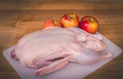 Carcassa cruda dell'anatra per arrostire Intera anatra cruda pronta da cucinare Fotografie Stock Libere da Diritti