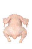 Carcassa del pollo Immagine Stock Libera da Diritti