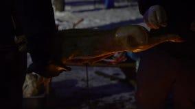 Carcassa del porcellino di torrefazione sul grande spiedo del metallo su fuoco aperto all'aperto alla notte archivi video