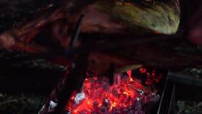 Carcassa dell'arrosto di maiale sulla griglia del carbone all'aperto al primo piano di notte archivi video