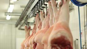Carcasse di maiale delle fette del macellaio nell'officina della carne stock footage