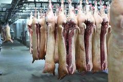 Carcasse di maiale sui ganci Fotografia Stock Libera da Diritti